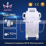 Home Use Cryolipolysis Fat Freeze Slimming Double Chin Removal Machine Cavitation Slimming Machine 2016 500W
