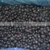 IQF frozen Blueberry with good quality and hot price