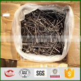 China Alibaba Trade Assurance Manufacturer supply size 2.0~5.2mm Twilled Shank Galvanized Concrete Nails                                                                         Quality Choice