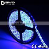 High Quality CE RoHS Outdoor RGB Strip Light Remote LED Multicolor Light Strip Light Waterproof