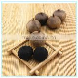 Factory price solo clove black garlic sale
