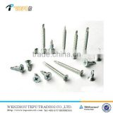 Self Drilling Screw,Tapping Screw,Drywall Screw With Phillips, Slotted, Pozidriv, Square