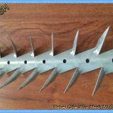 Hot dipped galvanized and PVC coated black medium wall spikes