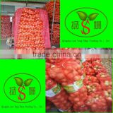 Wholesale Onions Red/Yellow/White Onion Sell Fresh Onion And Fresh Garlic