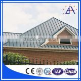 Aluminum Extruded Profile/Aluminium Ceiling Strips
