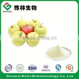 High Quality Natural Apple Pectin Powder Apple Fruit Juice Powder with Low Price