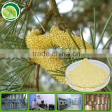YuenSun Provide Pure Cell Wall Broken Pine Pollen Powder