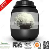 High quality Bulk BCAA powder , sports nutrition amino acids                                                                         Quality Choice