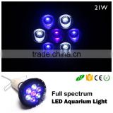 E27 21w led salt water lamp led aquarium light for coral reef