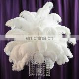 "40pcs/unit 12""white ostrich feather wedding decoration gatsby table centerpiece decoration FEATHER DIY TABLE EVENT CENTERPIECE"
