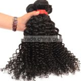Fashion Style 6A 100% Peruvian Virgin Hair Kinky Curly Human Hair Weave, Wholesale Virgin Hair