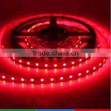 Dc12v/24v Smd3528 Ip65 Flex Led Strip Led Flexible Hose Light