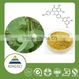 cGMP Manufacture USP Grade Natural Ginkgo Biloba Leaf Extract Flavone Glycosides Powder Best Microbiological Controller KS-311