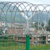 12Years Manufacturer Razor Barbed Tape Wire Fence