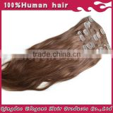 Wholesale high quality fast shipping cheap 100% human hair clip in hair extension
