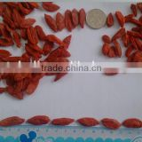 Dried Goji Berry Chinese Wolfberry