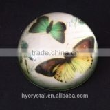wholesale beautiful round bird glass paperweight