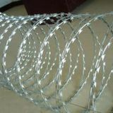 SS304/SS316 Barbed Wire