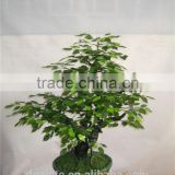 1m tall artificial banyan bonsai flower / tree ( plant bonsai flower RP002 / tree of DESTE )