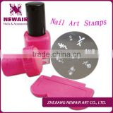 DIY Nail Art Stamping Plates Kit Assorted Plates Stamp & Scrapers & Stainless Steel Mix Template