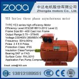 Y2VP Frequency Varaiable Speed Series AC motor