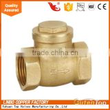 LB-GutenTop 2 inch water gas BBP thread in-line check valve spring vertical and Y type strainer
