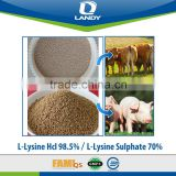 ISO&FAMI-QS certified high quality factory feed additive Lysine Hcl 98.5%
