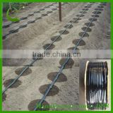 china cheap price 7mil irrigation drip t tape factory