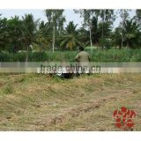 Good Price Mini Wheat / Rice Paddy Cutting Machine For Africa