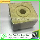 Rock wool cube for greenhouse hydroponic