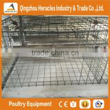 Heracles alibaba trade assurancechicken cage layer poultry farm house design