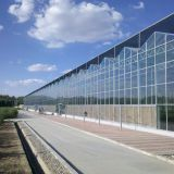 Commercial Glass Greenhouse with Clear PC Sheet Roof