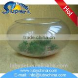 Multifunctional round glass fish bowl for wholesale