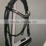 Crystal Double Horse Bridle