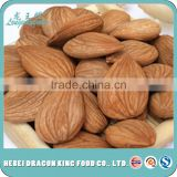 Factory direct cheap sweet apricot seeds, apricot kernel, raw apricot seeds similar to almonds