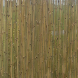 Bamboo fence with string