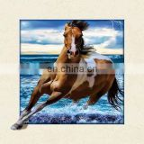 2016 new 3d picture, PET pictures,5D lenticular picture with frame
