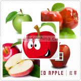 apple cider vinegar extract/apple extract phloridzin/apple fruit extract polyphenol