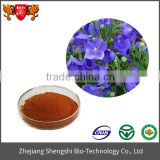 Flower extract powder supplier supply top quality Balloon Flower Extract