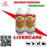 Poultry Feed Supplement Broiler Growth Promoter Liver Care Tonic Solution