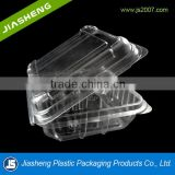 125g Disposbale Clear Container For Blue Berry