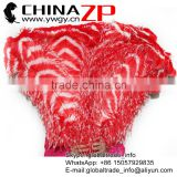 ZPDECOR Bulk Sale Leading Supplier 65-70cm Length Large Dyed Red and White Striped Ostrich Feathers for Parties