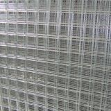 Stainless Steel 304 Wire Mesh/Wire Cloth/Wire Netting