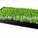 Customed Commerical Plastic Tray for Hydroponic Systems
