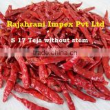 Hot chilly exporters