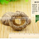dried mushroom---dried shiitake lentinus edodes without stem
