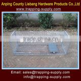 LB 60*18*20inch Live Animal Trap Catch Release Humane Rodent Cages For Fox Rabbit Opossum Dog China Factory
