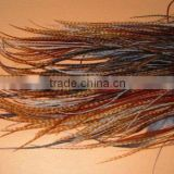 Rooster Saddle Hackle Hair Feathers Grizzly
