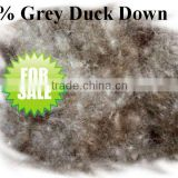 75% Washed Grey Duck Down