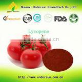 High Quality Distribute Tomato Extract/natural Lycopene Powder/lycopene powder anti-oxidant